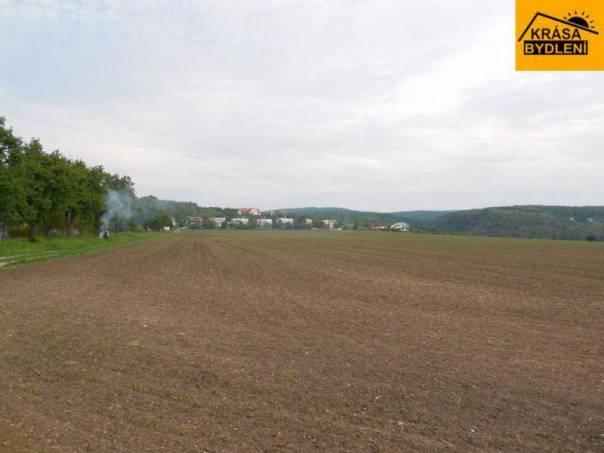 Prodej pozemku, Viničné Šumice, foto 1 Reality, Pozemky | spěcháto.cz - bazar, inzerce