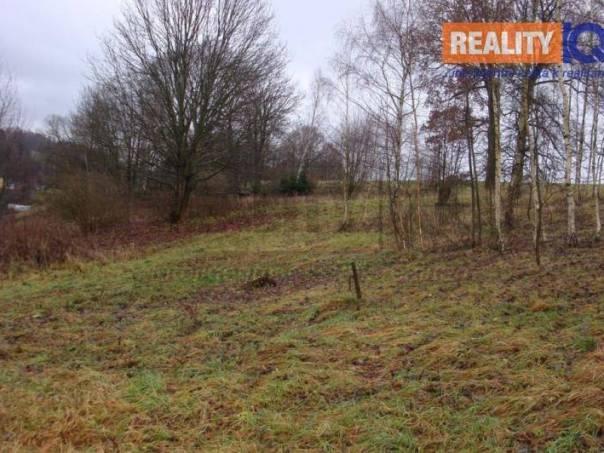 Prodej pozemku, Trutnov - Starý Rokytník, foto 1 Reality, Pozemky | spěcháto.cz - bazar, inzerce