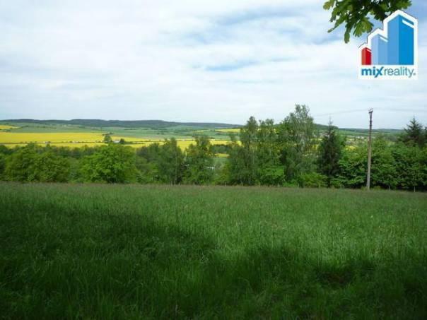 Prodej pozemku, Nezdice, foto 1 Reality, Pozemky | spěcháto.cz - bazar, inzerce