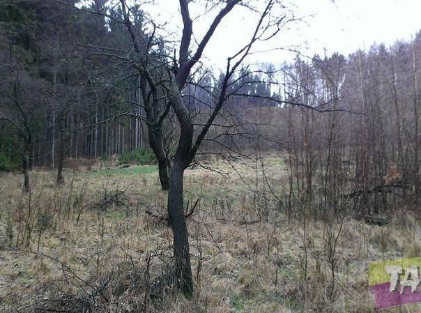 Prodej pozemku, Nová Paka - Vrchovina, foto 1 Reality, Pozemky | spěcháto.cz - bazar, inzerce