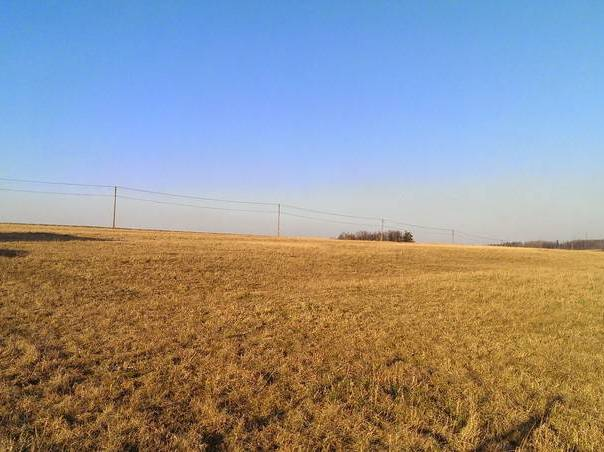 Prodej pozemku, Těrlicko, foto 1 Reality, Pozemky | spěcháto.cz - bazar, inzerce
