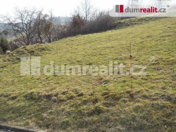 Prodej pozemku, Bělov, foto 1 Reality, Pozemky | spěcháto.cz - bazar, inzerce