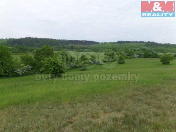 Prodej pozemku, Nepomyšl, foto 1 Reality, Pozemky | spěcháto.cz - bazar, inzerce