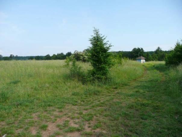 Prodej pozemku, foto 1 Reality, Pozemky | spěcháto.cz - bazar, inzerce