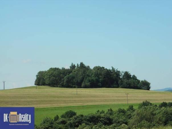 Prodej pozemku, Běhařov, foto 1 Reality, Pozemky | spěcháto.cz - bazar, inzerce
