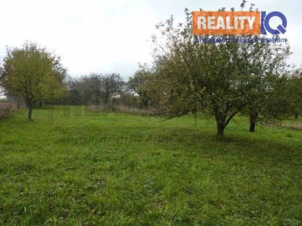 Prodej pozemku, Kladníky, foto 1 Reality, Pozemky   spěcháto.cz - bazar, inzerce