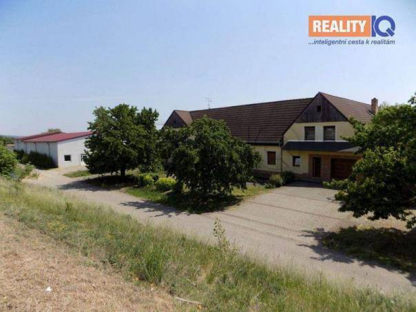 Prodej nebytového prostoru, Žabčice, foto 1 Reality, Nebytový prostor | spěcháto.cz - bazar, inzerce
