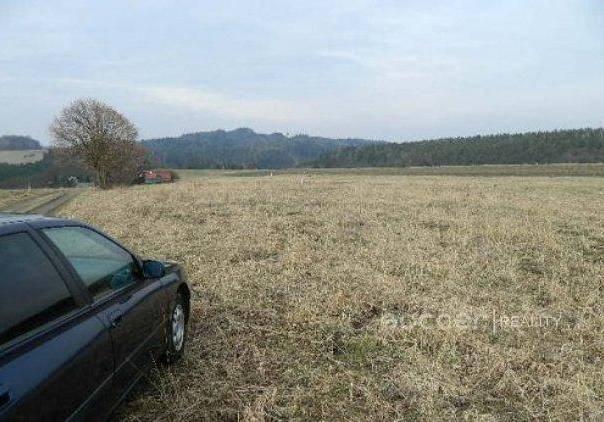 Prodej pozemku, Černé Voděrady, foto 1 Reality, Pozemky | spěcháto.cz - bazar, inzerce