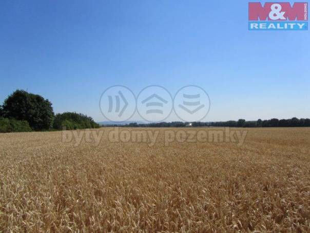 Prodej pozemku, Otvice, foto 1 Reality, Pozemky | spěcháto.cz - bazar, inzerce
