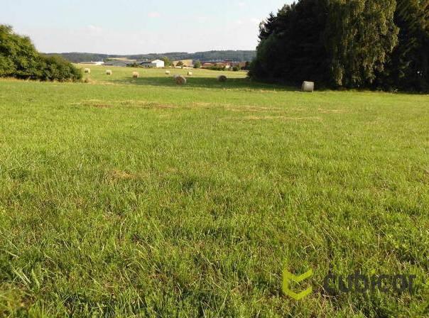 Prodej pozemku, Losiná, foto 1 Reality, Pozemky | spěcháto.cz - bazar, inzerce