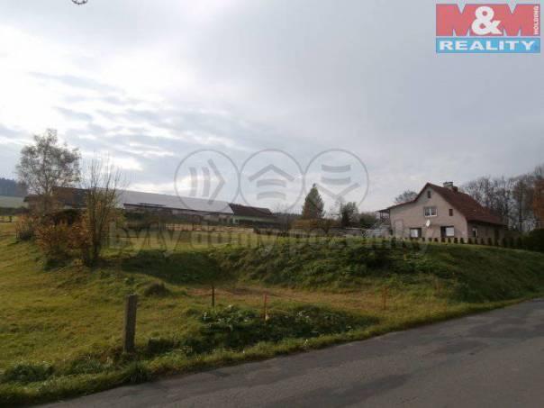 Prodej pozemku, Stárkov, foto 1 Reality, Pozemky | spěcháto.cz - bazar, inzerce