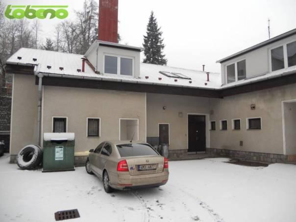 Pronájem bytu 1+kk, Stražisko, foto 1 Reality, Byty k pronájmu | spěcháto.cz - bazar, inzerce