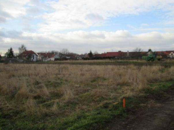 Prodej pozemku, Hrušovany nad Jevišovkou, foto 1 Reality, Pozemky | spěcháto.cz - bazar, inzerce