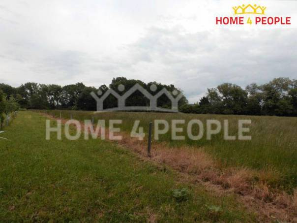 Prodej pozemku, Žabčice, foto 1 Reality, Pozemky | spěcháto.cz - bazar, inzerce
