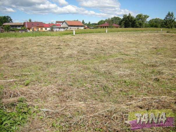 Prodej pozemku, Dubenec, foto 1 Reality, Pozemky | spěcháto.cz - bazar, inzerce
