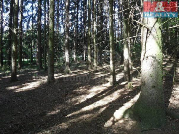 Prodej pozemku, Vilémov, foto 1 Reality, Pozemky | spěcháto.cz - bazar, inzerce