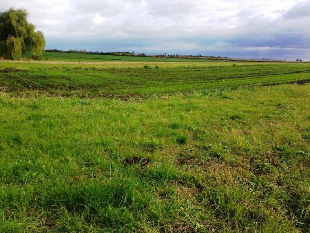 Prodej pozemku, Beňov, foto 1 Reality, Pozemky | spěcháto.cz - bazar, inzerce