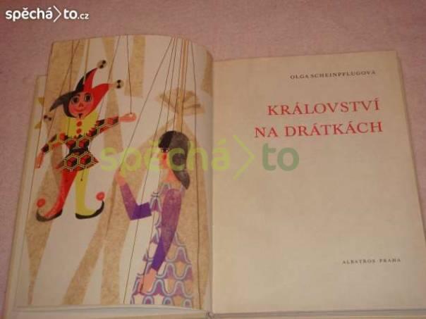 Království na drátkách, foto 1 Hobby, volný čas, Knihy | spěcháto.cz - bazar, inzerce zdarma