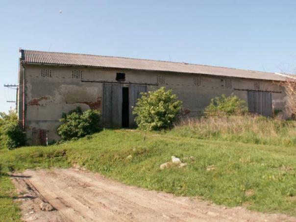 Prodej nebytového prostoru, Puklice, foto 1 Reality, Nebytový prostor | spěcháto.cz - bazar, inzerce