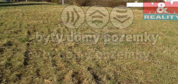 Prodej pozemku, Tupesy, foto 1 Reality, Pozemky | spěcháto.cz - bazar, inzerce