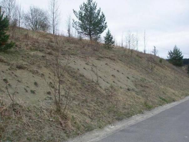 Prodej pozemku Ostatní, Dešná, foto 1 Reality, Pozemky | spěcháto.cz - bazar, inzerce