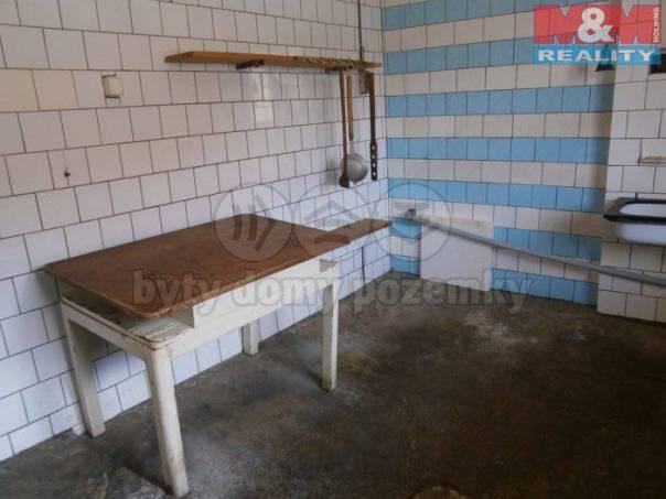 Prodej nebytového prostoru, Lenešice, foto 1 Reality, Nebytový prostor | spěcháto.cz - bazar, inzerce