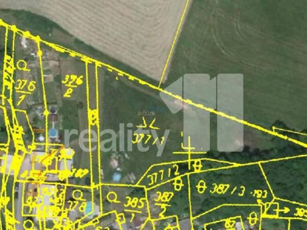 Prodej pozemku, Krasíkov, foto 1 Reality, Pozemky | spěcháto.cz - bazar, inzerce