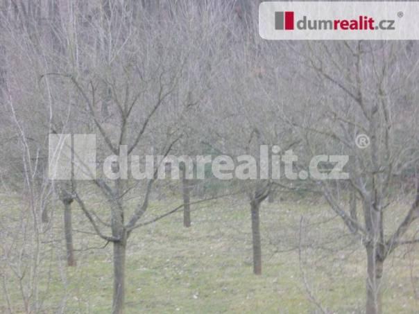 Prodej pozemku, Žarošice, foto 1 Reality, Pozemky | spěcháto.cz - bazar, inzerce