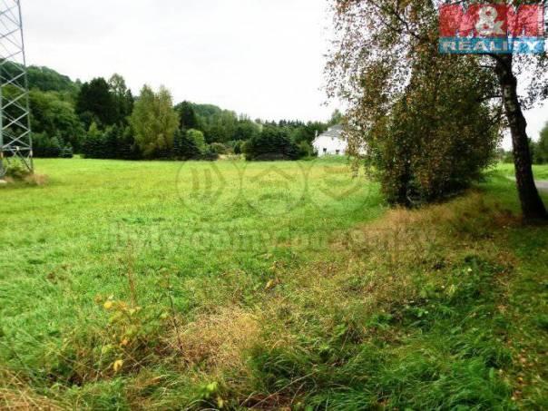 Prodej pozemku, Stružinec, foto 1 Reality, Pozemky   spěcháto.cz - bazar, inzerce