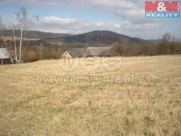 Prodej pozemku, Brantice, foto 1 Reality, Pozemky | spěcháto.cz - bazar, inzerce