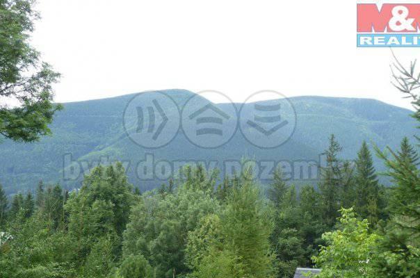 Prodej pozemku, Ostravice, foto 1 Reality, Pozemky | spěcháto.cz - bazar, inzerce