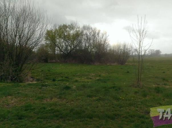 Prodej pozemku, Smidary - Chotělice, foto 1 Reality, Pozemky | spěcháto.cz - bazar, inzerce
