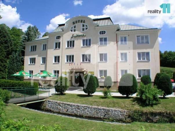 Prodej nebytového prostoru, Ostrov, foto 1 Reality, Nebytový prostor | spěcháto.cz - bazar, inzerce