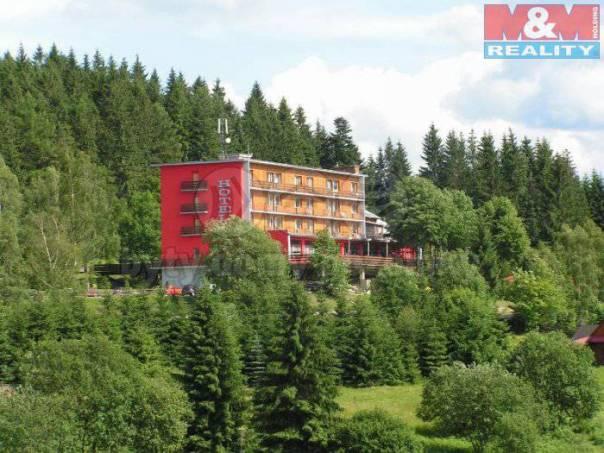 Prodej bytu 1+kk, Krásná, foto 1 Reality, Byty na prodej | spěcháto.cz - bazar, inzerce