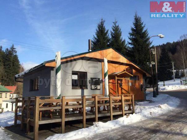 Pronájem nebytového prostoru, Deštné v Orlických horách, foto 1 Reality, Nebytový prostor | spěcháto.cz - bazar, inzerce