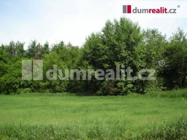 Prodej pozemku, Oráčov, foto 1 Reality, Pozemky | spěcháto.cz - bazar, inzerce
