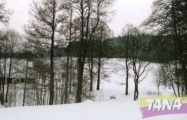Prodej pozemku, Bernartice - Křenov, foto 1 Reality, Pozemky | spěcháto.cz - bazar, inzerce