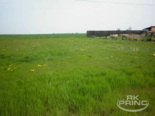 Prodej pozemku, Máslovice, foto 1 Reality, Pozemky | spěcháto.cz - bazar, inzerce
