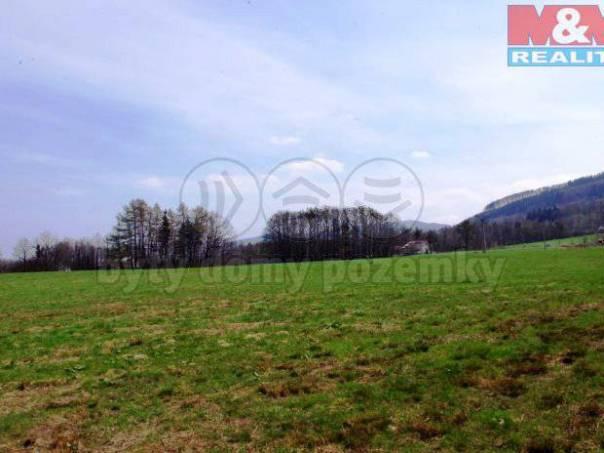 Prodej pozemku, Smilovice, foto 1 Reality, Pozemky | spěcháto.cz - bazar, inzerce