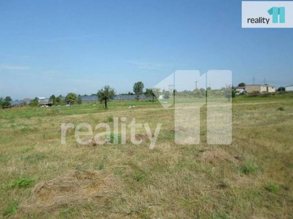 Prodej pozemku, Velký Borek, foto 1 Reality, Pozemky | spěcháto.cz - bazar, inzerce
