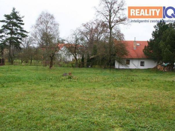 Prodej pozemku, Dolní Bukovsko - Bzí, foto 1 Reality, Pozemky | spěcháto.cz - bazar, inzerce