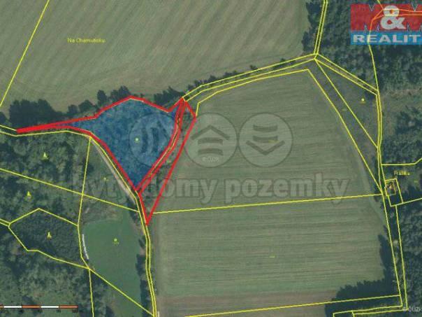 Prodej pozemku, Petrovice u Sušice, foto 1 Reality, Pozemky | spěcháto.cz - bazar, inzerce