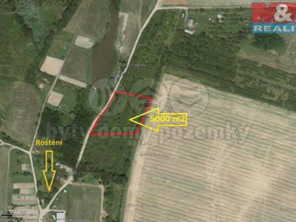 Prodej pozemku, Roštění, foto 1 Reality, Pozemky | spěcháto.cz - bazar, inzerce