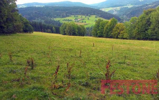 Prodej pozemku, Jablonec nad Jizerou, foto 1 Reality, Pozemky | spěcháto.cz - bazar, inzerce