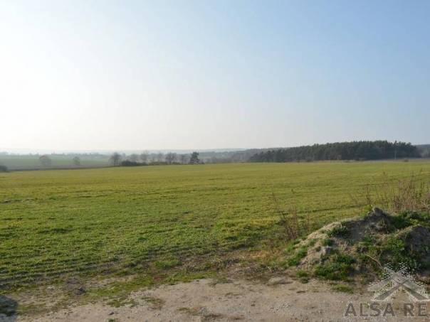 Prodej pozemku, Bělá nad Radbuzou, foto 1 Reality, Pozemky | spěcháto.cz - bazar, inzerce