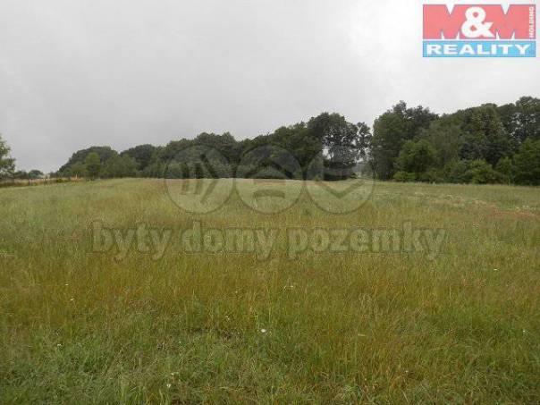 Prodej pozemku, Ohnišov, foto 1 Reality, Pozemky | spěcháto.cz - bazar, inzerce