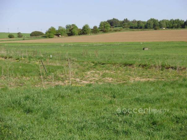 Prodej pozemku, Lešetice, foto 1 Reality, Pozemky | spěcháto.cz - bazar, inzerce