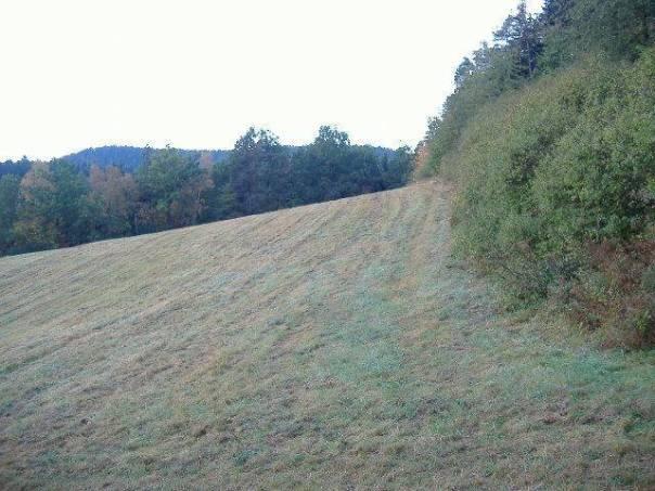 Prodej pozemku Ostatní, Náchod - Náchod, foto 1 Reality, Pozemky | spěcháto.cz - bazar, inzerce