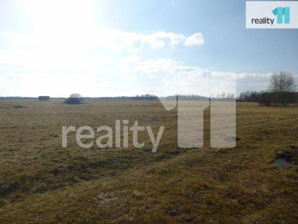 Prodej pozemku, Česká Lípa, foto 1 Reality, Pozemky | spěcháto.cz - bazar, inzerce