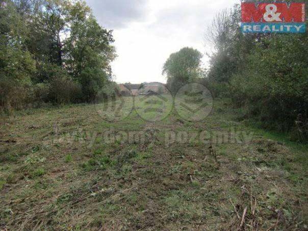 Prodej pozemku, Měrunice, foto 1 Reality, Pozemky | spěcháto.cz - bazar, inzerce